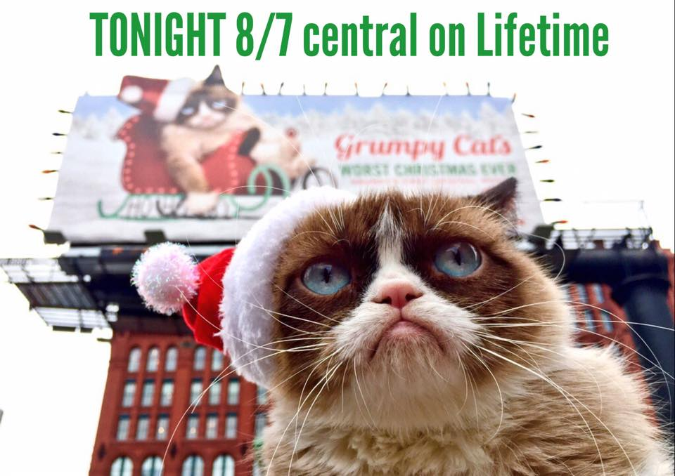 Grumpy Cat's Worst Christmas Ever premieres TONIGHT!