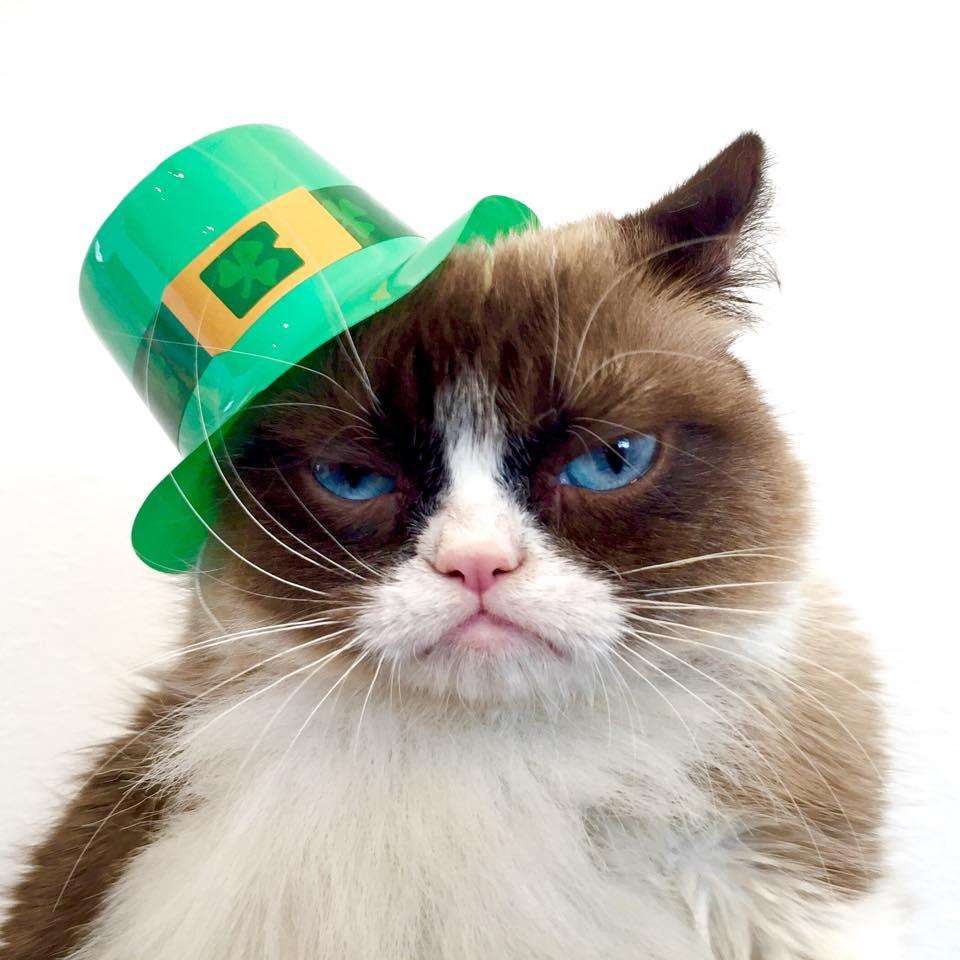 St Patrick S Day Grumpy Cat